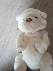 Teddy bewegt sich