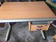 Moll Schreibtisch ChampionBuche/