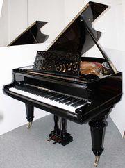 Klavier Flügel Ibach,