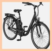 E - Bike Prophete Navigator Expedition