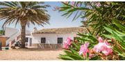FINCA - Spanien - Costa Calida - nur