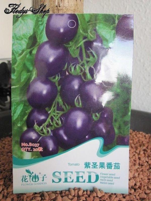 Original Tomato Seed 20 Lila Tomaten Samen Anzucht Garten In Dresden