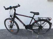 Herren-Rad Raleigh