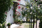 Ferienwohnung in Binz