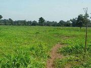 Brasilien 4600 Ha Grundstück bei