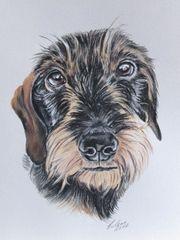Tiermalerei, Tierzeichnungen, Tierportraits