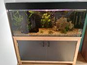 Aquarium mit Tischlerunterschrank