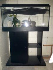 Aquarium Juwel mit