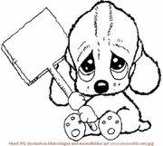 Suche Verbandsmaterial für den Tierschutz