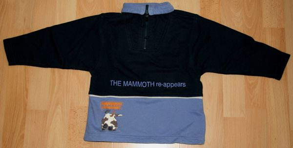 Mammut Focus Klettergurt Größentabelle : Mammut kaufen gebraucht dhd
