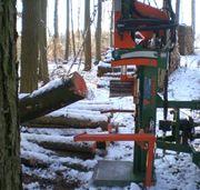 Posch Holzspalter 22T