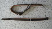 Hunter-Leder-Hundehalsband