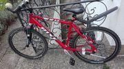 Mountainbike - 26 Zoll -