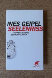 Buch: SEELENRISS - Depression