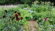 Garten mit Bachlauf