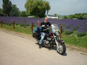 Chopper Biker Roller-Fahrer in auch