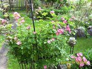 Schrebergarten - Gartenanlage - Freizeitgrundstück -