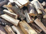 Brennholz 25cm Buche Eiche