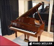 Steinway Sons Modell S-155 in