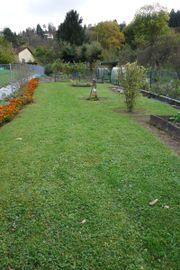 Gepflegtes Gartengrundstück mit