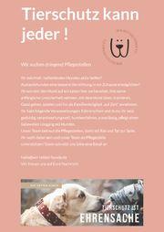 Liebevolle hundeerfahrene Pflegestellen gesucht -