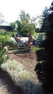 Gartenlaube Massiv auf