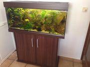 Aquarium + Unterschrank Eheim