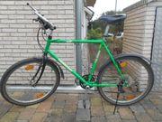 Gepflegtes Grünes Herrenfahrrad Montainbike Thunderbird