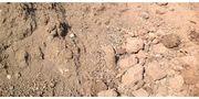 Sand Erdaushub zu verschenken