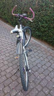 Mountainbike-26