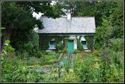 Sozialpädagogin sucht Wohnung mit Garten