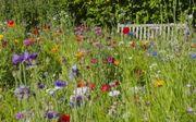 Suche Garten in langen egelsbach