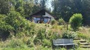 Osterurlaub mit Hund Thüringer Wald