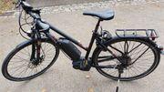 E-Bike Pegasus Premio