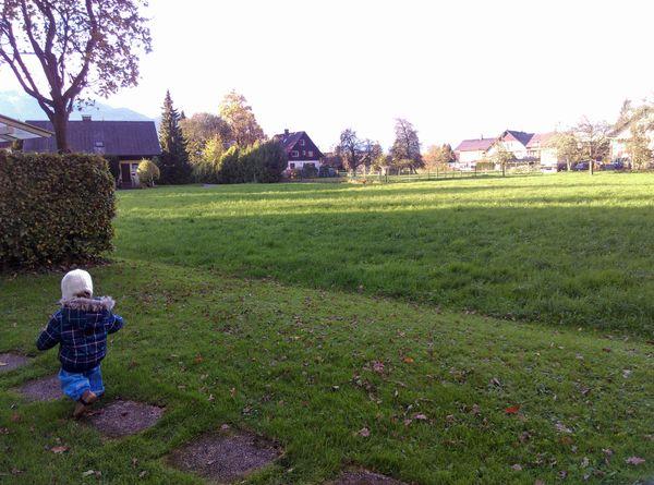 Suchen Grundstück Für Ein Doppelhaus In Feldkirch Grundstücke