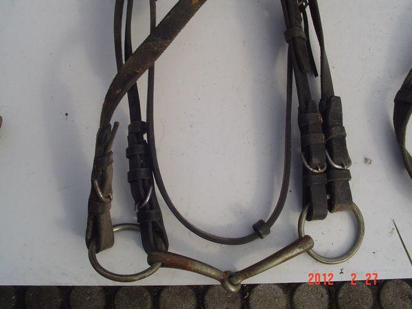 Pferde Zaumzeug Haflinger