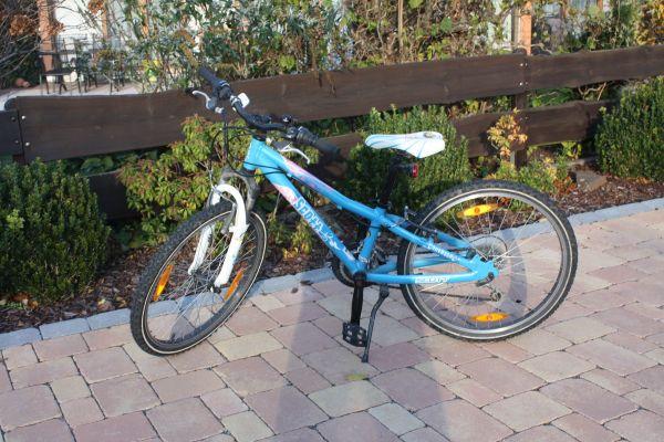 mountainbike 24 scott gebraucht kaufen nur 4 st bis 70. Black Bedroom Furniture Sets. Home Design Ideas