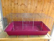 Meerschweinchen - Käfig