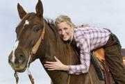 Kombi Pferdeversicherung - Vergleich preiswerter Tarife