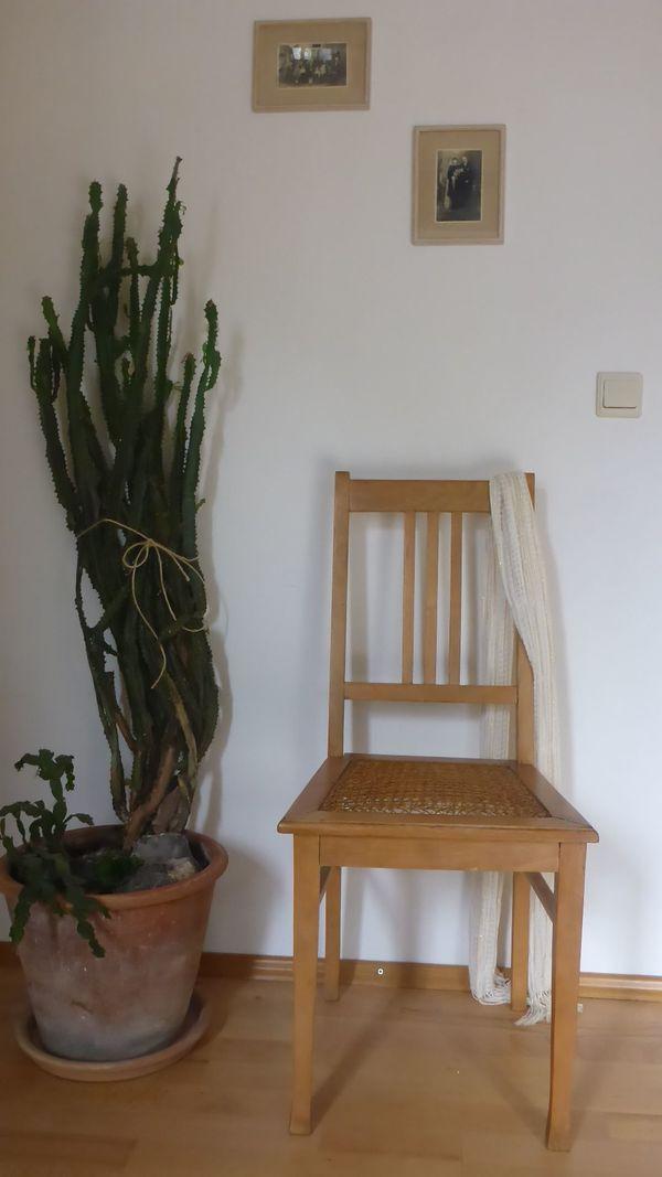Alte Stühle kaufen / Alte Stühle gebraucht - dhd24.com