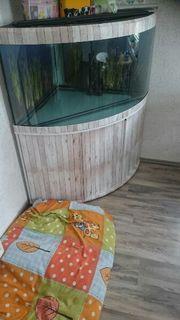 350 Liter Aquarium