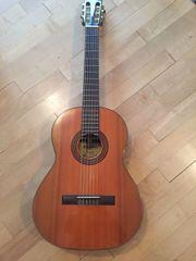 Gitarre Martinez Modell