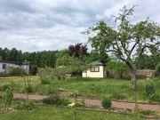Grüna Kleingarten mit