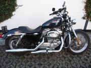 2009 Harley-Davidson XL 883 Low