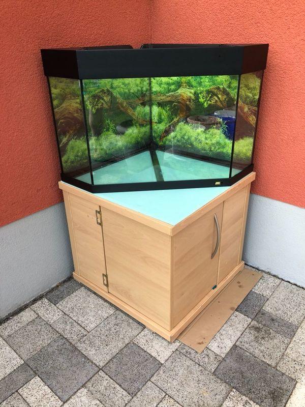 Juwel Eck-Aquarium DELTA 80 in Germersheim - Fische, Aquaristik ...