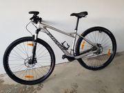Carbon Mountainbike Specialized 17 Rahmen