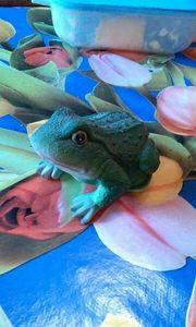 Ein grüner Frosch aus Ton
