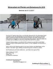 Winterarbeit mit Pferden