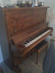 Arnold Aschaffenburg Klavier